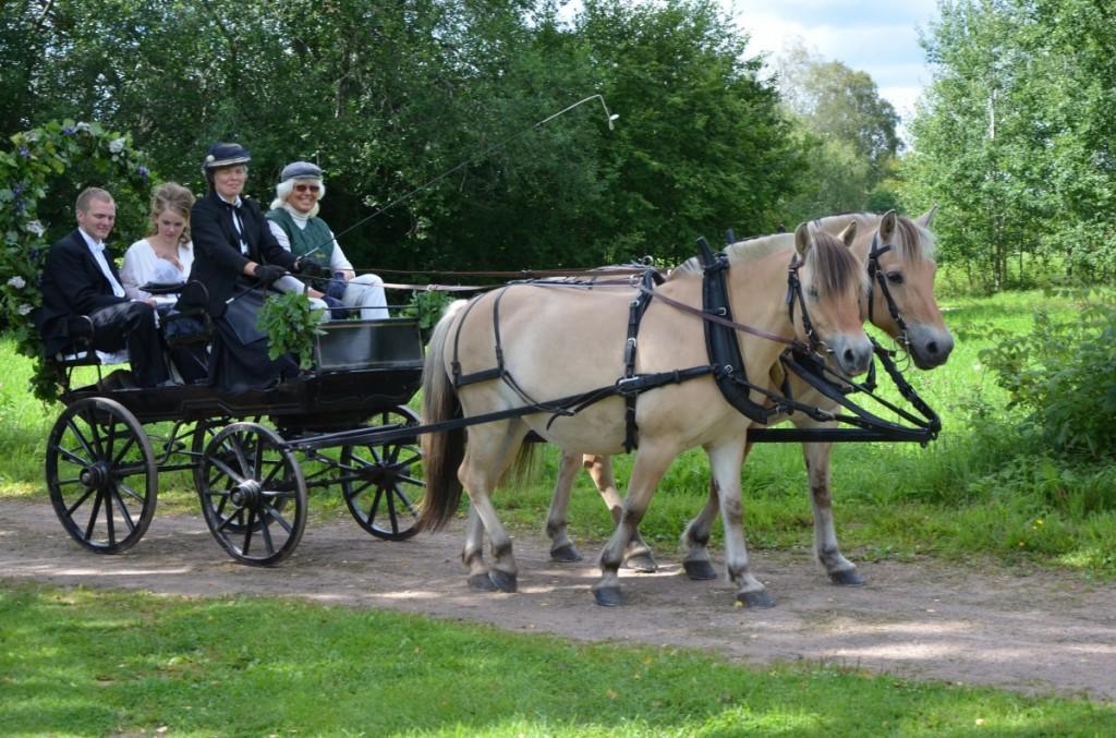 Häst och vagn till bröllopet